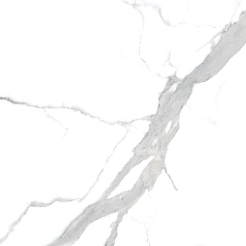 雪狼陶瓷8F805B产品图片
