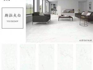格仕陶瓷砖图片白色瓷砖系列 现代简约风格瓷砖效果图