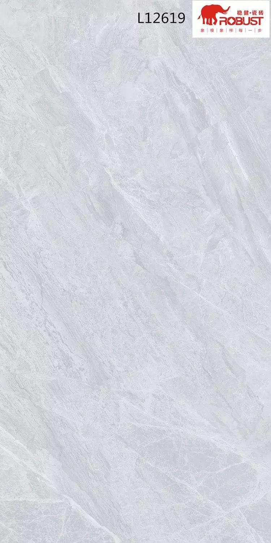 稳健陶瓷图片 负离子通体大理石效果图