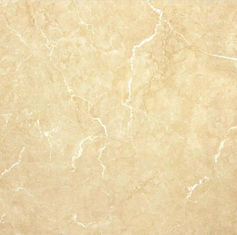 骏程陶瓷加盟产品 瓷抛砖装修效果图