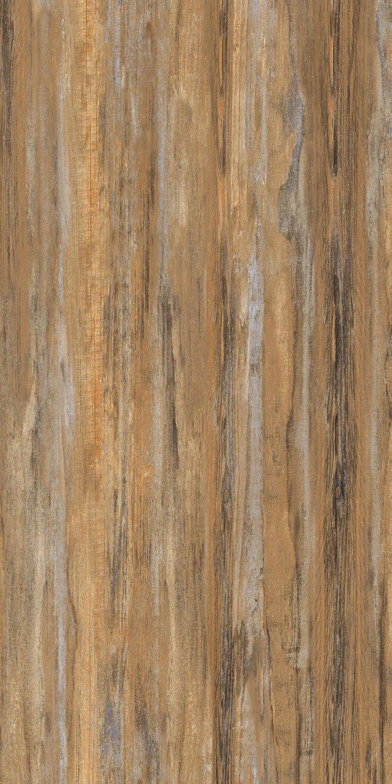 大将军瓷砖图片 生态木纹砖装修效果图