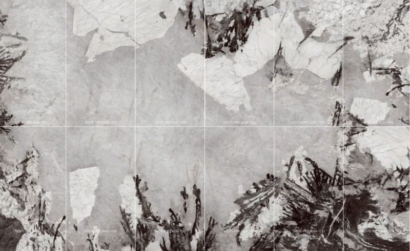顺辉瓷砖图片 现代轻奢风格陶瓷图片效果图