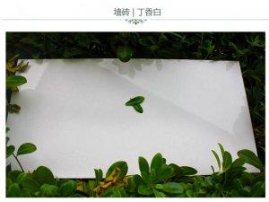 冠军瓷砖 皇品数码 陶质砖 卫浴阳台厨房 墙砖花片 300x600效果图